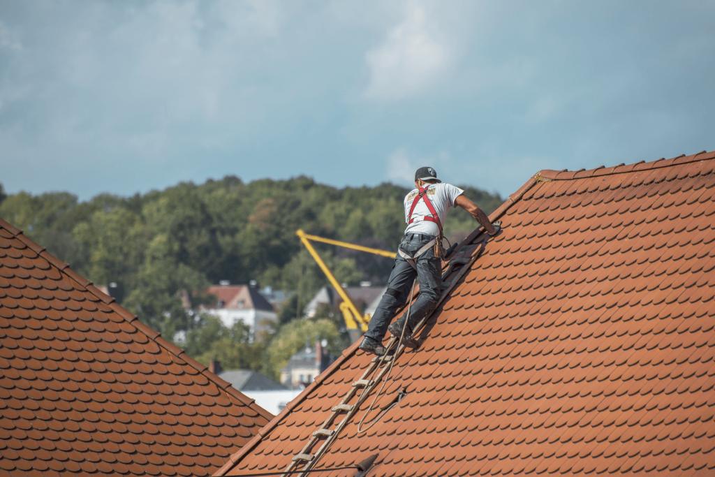 Services-Bradenton Metal Roof Installation & Repair Contractors
